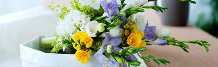 Freesia: een bloem die herinneringen creëert