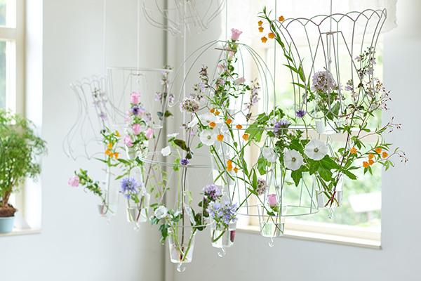 10-zomerbloemen