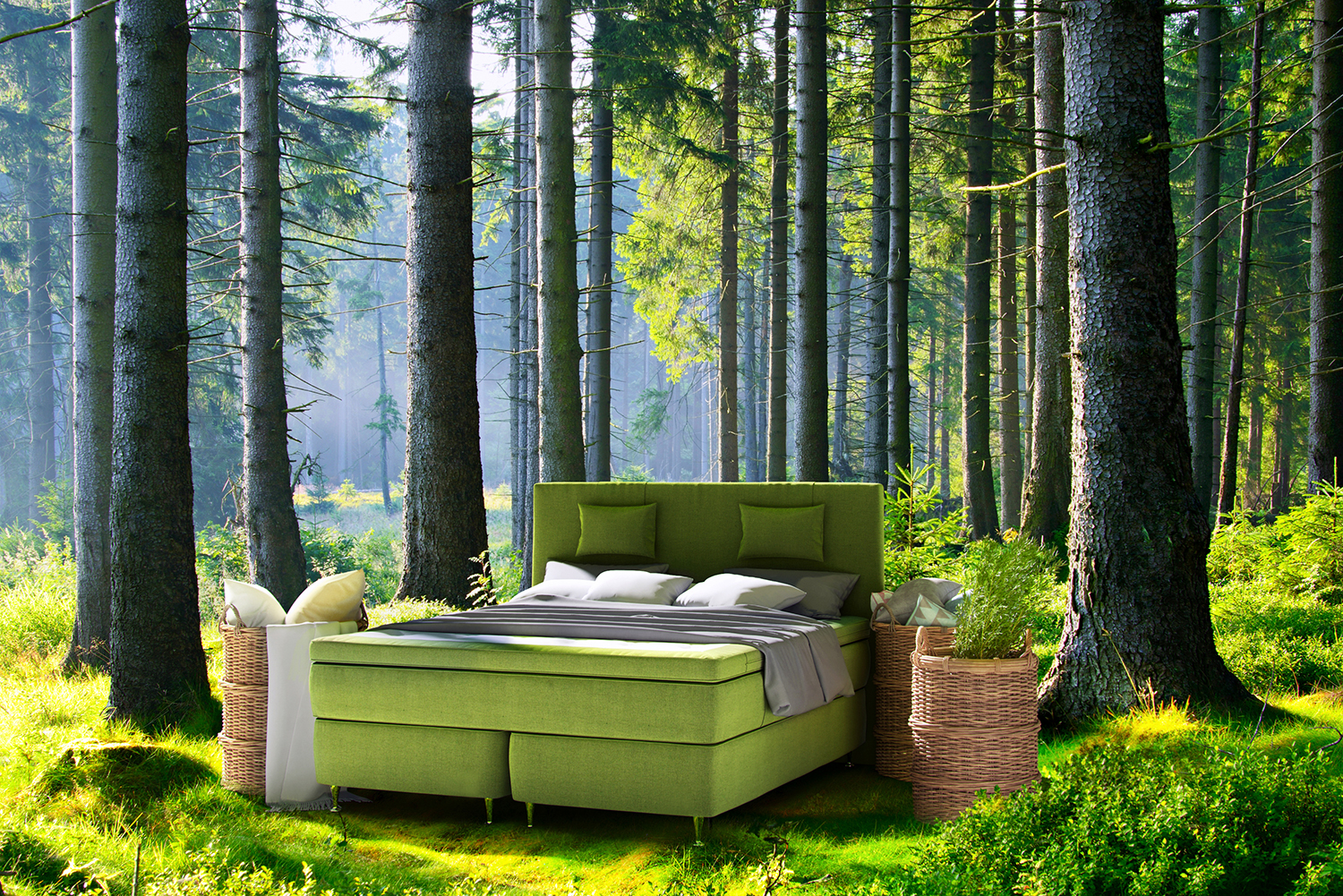 Ecolife beds