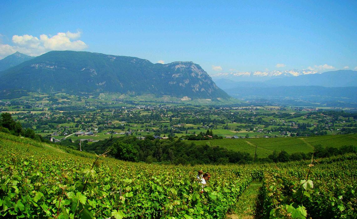 Op wijn & cultuurreis in Savoie Mont Blanc